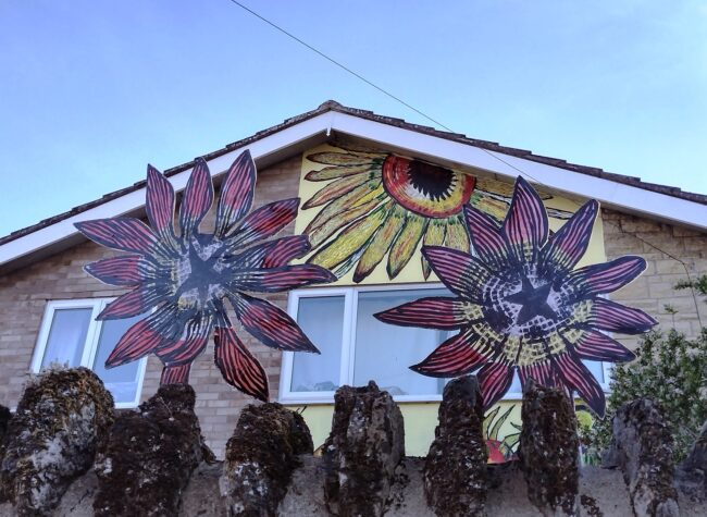 Alex Singleton has decorated his home with sunflowers